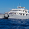 Alya Catamaran Lastminute October 2020