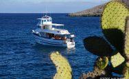 Danubio Azul Galapagos Cruise Dive Yacht